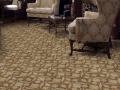 carpet 1 copy