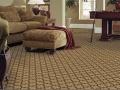 carpet 2 copy