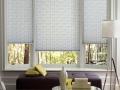 pleatedshades_easyrise_livingroom